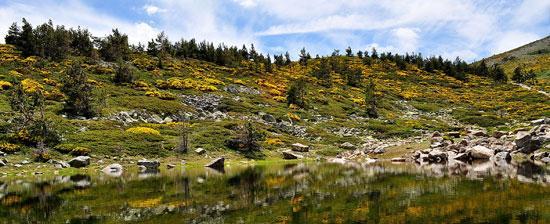 Parques Naturales - Sierra de Guadarrama