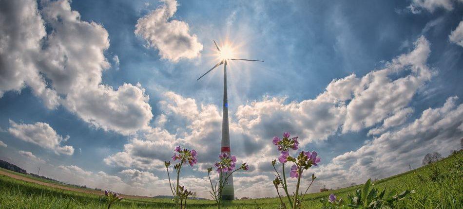combustibles renovables para coches