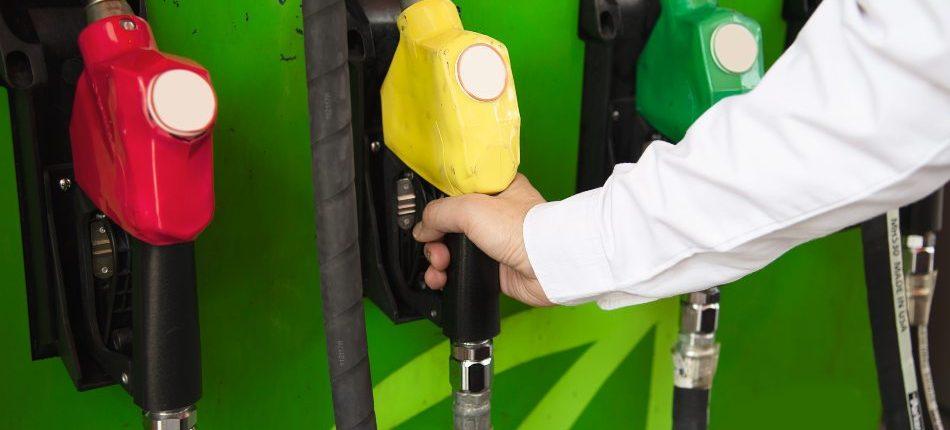 combustibles alternativos al diesel